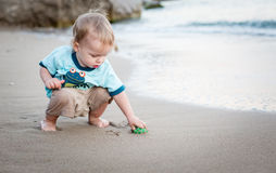Cute toddler boy playing on the beach Royalty Free Stock Images