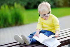 Cute toddler boy reading a book outdoors on warm summer day Royalty Free Stock Image
