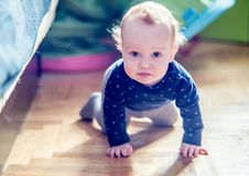 Cute toddler boy in a room posing. While crawling Royalty Free Stock Photo