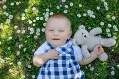 Cute toddler boy with teddy bear, sitting on the grass, daisies. Around him, shot from above Stock Photos