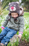 Cute toddler boy trying to disrupt the snowdrop. Cute toddler boy with enjoying look at snowdrops in spring Stock Photo