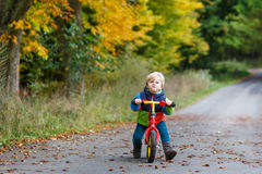 Cute toddler boy of two years riding bike in autumn forest Royalty Free Stock Photos