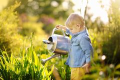 Cute toddler boy watering plants in the garden at summer sunny day. Mommy little helper royalty free stock photography