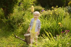 Cute toddler boy watering plants in the garden at summer sunny day. Mommy little helper royalty free stock photos