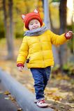 Cute toddler boy wearing hat with ears playing outdoors at autumn day Royalty Free Stock Photography