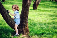 Cute toddler child boy with long hair in stylish outfit playing with toy car on the walk in summer. Or spring garden, sitting on big tree royalty free stock photos