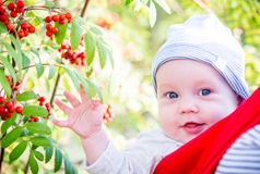 Cute toddler closeup portrait Royalty Free Stock Photos
