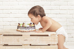 Cute toddler eating his cake Stock Images