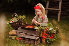 Cute toddler girl in autumn garden making rowan berry beads Royalty Free Stock Photos