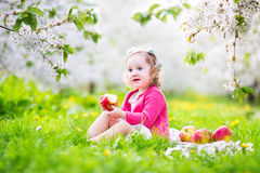 Cute toddler girl eating apple in a blooming garden Stock Images