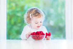 Cute toddler girl eating raspberries in a dining room with a big Royalty Free Stock Images