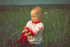 Cute toddler girl with funny face in a meadow Stock Images