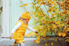 Cute toddler girl playing with leaves in autumn park on the walk. Wearing fashion yellow outfit Stock Photography