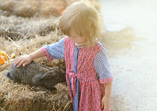 Cute toddler girl in a rustic style dress caressing little grey rabbit Stock Image