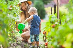 Cute toddler helphing mom in the garden royalty free stock image