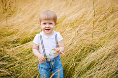 Cute toddler on meadow Stock Image