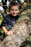 Cute Toddler in Old Oak. A cute little country boy toddler standing inside a huge old oak tree. Shallow depth of field Stock Photo