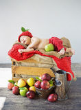 Cute toddler sleeping on a box of apples Royalty Free Stock Image
