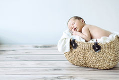Cute toddler sleeping in a wicker basket Royalty Free Stock Photo