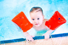 Cute toddler in swimming pool wearing red armbands Stock Photos