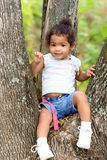 Cute toddler in a tree. A view of a cute little 2-year old toddler sitting in a tree Stock Image