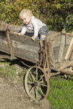 Cute toddler in waggon Royalty Free Stock Image