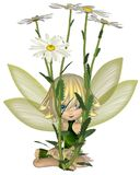 Cute Toon Daisy Fairy, Sitting Royalty Free Stock Images