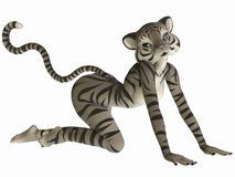 Cute Toon Figure - White Tiger Stock Image