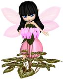 Cute Toon Pink Cyclamen Fairy, Standing. Cute toon dark haired fairy in leaf and petal dress with pink wings, looking at pink cyclamen flowers, 3d digitally Stock Photography