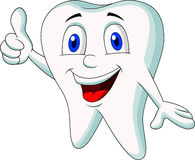 Cute tooth cartoon thumb up Stock Image