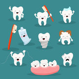 Cute Tooth Character Set Stock Photos
