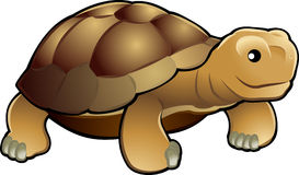 Cute tortoise vector illustrat. A vector illustration cute and friendly tortoise Stock Photos