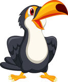 Cute toucan bird cartoon Stock Photography