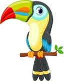 Cute toucan bird cartoon royalty free illustration