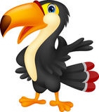 Cute toucan cartoon presenting Stock Images