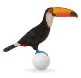 Cute Toucan Sitting on a Ball. Royalty Free Stock Images