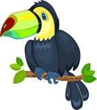 Cute toucan Royalty Free Stock Image
