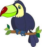 Cute toucan Royalty Free Stock Photos