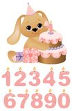 Cute toy with birthday cake Royalty Free Stock Image