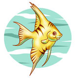 Cute tropical fish. Illustration of a cute yellow tropical fish Stock Photography