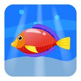 Cute Tropical fish, red color in sea, ocean, cartoon style, vector illustration, isolated. Cute Tropical fish, red color in sea, ocean, cartoon style, vector Stock Photos