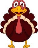 Cute Turkey Cartoon Stock Images
