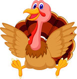Cute turkey cartoon Stock Photography