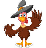 Cute turkey cartoon Stock Photos