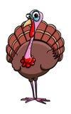 Cute turkey cartoon. Illustration of cute turkey cartoon Royalty Free Stock Photos