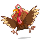 Cute turkey cartoon Stock Image