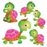 Cute turtle cartoon actions. Cute kids turtle cartoon vector Stock Photos