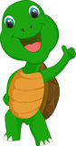 Cute turtle cartoon give thumb up Stock Photography