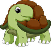 Cute turtle cartoon Stock Photos