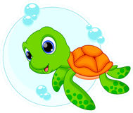 Cute turtle cartoon Stock Image